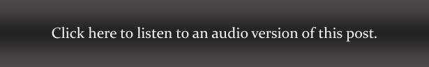 Audio Link Grey