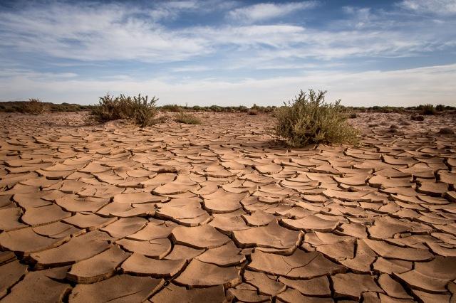 Cracked clay landscape in the Atacama desert.