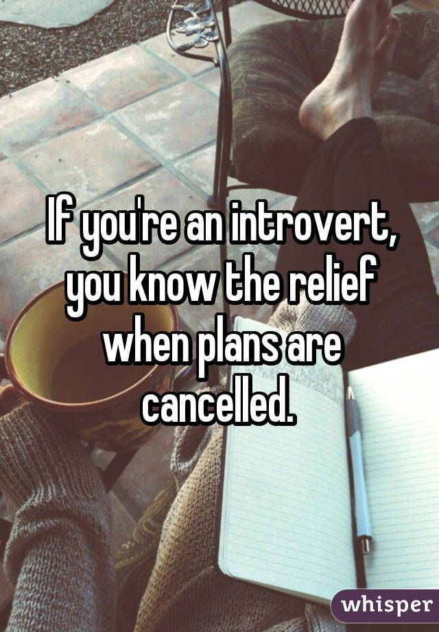 cancelled plans macro
